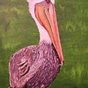 Brown Pelican I Art Print