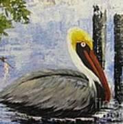 Brown Pelican Revisited Art Print