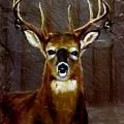 Buck On Slate  Art Print