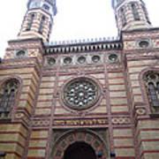 Budapest Synagogue Art Print