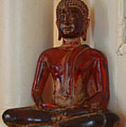 Buddha In Savannah Art Print