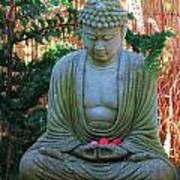 Buddha  Art Print