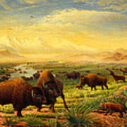 Buffalo Fox Great Plains Western Landscape Oil Painting - Bison - Americana - Historic - Walt Curlee Art Print