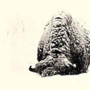 Buffalo Hump Art Print