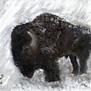 Buffalo In The Snow Art Print