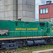 Buffalo Southern 2010 Art Print