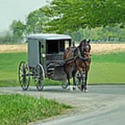 Buggy Ride Art Print