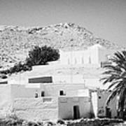 buildings and palm trees overground on the surface at Matmata Tunisia Art Print
