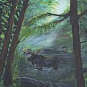 Bull Moose Pond Art Print