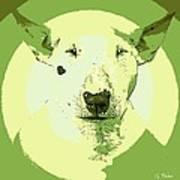 Bull Terrier Graphic 2 Art Print