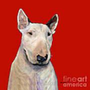 Bull Terrier On Red Art Print