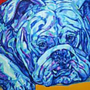 Bulldog Blues Art Print