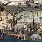 Bullocks Museum, 22 Piccadilly, London Art Print