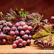 Bunch Of Grapes Art Print