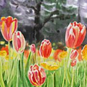 Bunch Of Tulips IIi Art Print