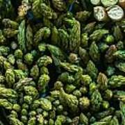 Bunches Of Asparagus On Display At The Farmers Market Art Print
