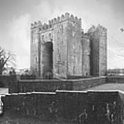 Bunratty Castle - Ireland Print by Mike McGlothlen