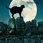 Buona Sera Bella Luna Art Print