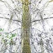 Burden Center Spirit Tree Art Print