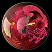 Burgundy Orchids In A Glass Globe Art Print