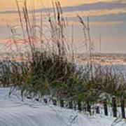 Buried Fence And Sea Oats Sunrise Art Print
