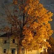 Burning Leaves At Night Art Print