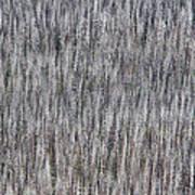 Burnt Trees Abstract Art Print