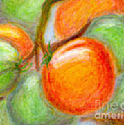 Burpee Tomatoes Art Print