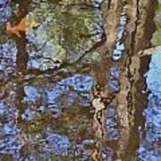 Reflection In Bushkill Falls  Art Print