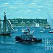 Busy Halifax Harbor During The Parade Of Sails Art Print
