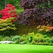Butchart Gardens Lawn And Tree Art Print