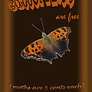 Butterflies Are Free Art Print by Larry Bishop