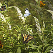 Butterflies In Golden Garden Art Print