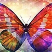 Butterfly 14-1 Art Print
