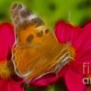 Butterfly-5416-fractal Art Print