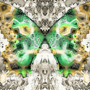 Butterfly Abstraction 6 Art Print