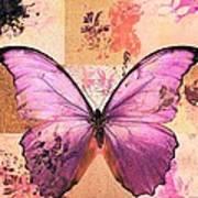 Butterfly Art - Sr51a Art Print