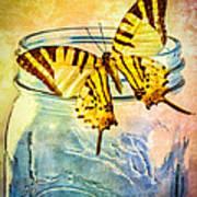 Butterfly Blue Glass Jar Art Print