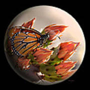Butterfly In A Globe Art Print