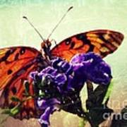 Butterfly Kissed Art Print