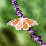 Butterfly - Monarch - Photopower 319 Art Print