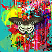 Butterfly Montage Art Print by Gary Grayson