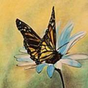 Butterfly On Flower Art Print
