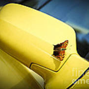 Butterfly On Sports Car Mirror Art Print by Elena Elisseeva