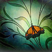 Butterfly Pause V1 Art Print