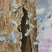 Butterfly Tree Art Print by Paula Marsh