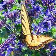 Butterfly With Purple Flowers 3 Art Print