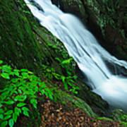 Buttermilk Falls Gorge Art Print