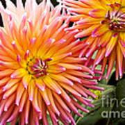 Buy Me Flowers Art Print