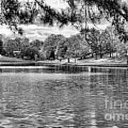 Bw Lake Views  Art Print by Chuck Kuhn